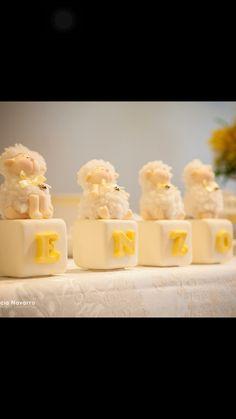 Enzo com ovelhas batizado ovelhas