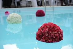 floating decor for the pool. fake flowers on Styrofoam ball. keep in place w/ plastic fishing line attached to bag of clear marbles Floating Pool Decorations, Pool Party Decorations, Party Centerpieces, Pool Candles, Floating Candles, Floating Flowers, Fake Flowers, Silk Peonies, Peony