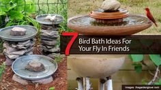 7 Bird Bath Ideas For Your Fly In Friends