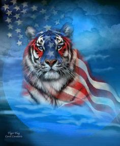 Happy Memorial Day from Tank the Tiger and the rest of the motorcycle accident lawyers at Law Tigers.