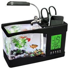 USB Desktop Aquarium ~ would be great to rest your eyes away from the computer at work office or home office