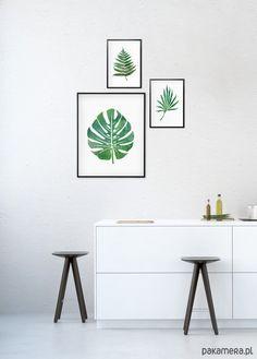 dodatki - plakaty, ilustracje, obrazy - inne-Komplet grafik botanicznych - liście tropikalne