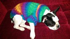 Dog dress-Big and Small Dog Costume-Dog by RainbowPetShop on Etsy https://www.etsy.com/listing/217629574/dog-dress-big-and-small-dog-costume-dog?ref=listing-shop-header-1