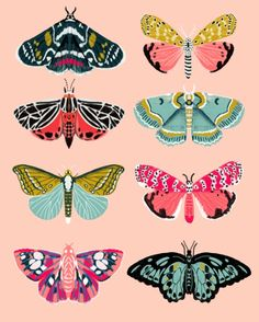 Lepidoptery No. 1 by Andrea Lauren Art Print