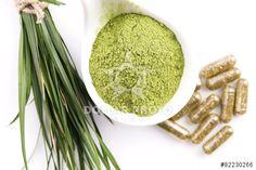 https://pl.dollarphotoclub.com/stock-photo/Young barley grass. Detox superfood./82230266Dollar Photo Club - miliony zdjęć stockowych w cenie 1$ każde