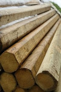 Landscape timber - I think these would be great for poles - available at Home Depot for under $5 each.