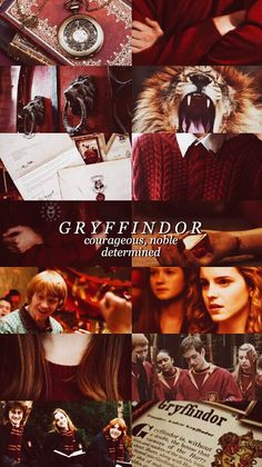 Gryffindor. My house :)