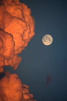 ♥ Moon