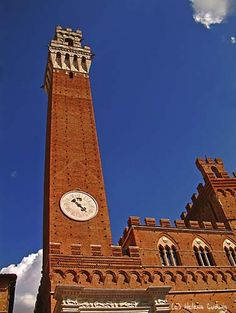 Siena/Italy/Tuscany by Helena Ludwig
