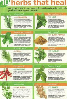 10 Herbs That Heal  @CivJones Facebook55TwitterMore70 Source: Roman Slavik / Getty Here is a list of some of top healing herbs that may be in your cupboard:  1. Rosemary 2. Oregano 3. Dill 4. Cayenne  5. Cilantro 6. Mint 7. Curry Powder  8. Parsley 9. Basil   10. Ginger