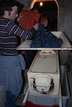 Wine making machine