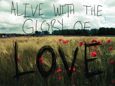 Alive with Love
