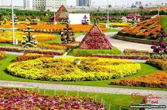 jardines jardines
