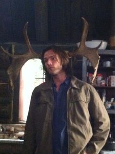 """@jarpad: """"An older, more pensive moose..."""" happy birthday to my favorite moose!!"""