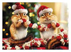 Avanti Press Cards, Christmas with All The Trimmings, 10 Count (701152) Avanti Press http://www.amazon.com/dp/B011OFMKI4/ref=cm_sw_r_pi_dp_qakvwb17EWCPY