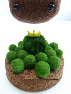 marimo kingdom 3 little BABIES SPECIAL (0.7cm) - the living green moss balls on Etsy, $2.99