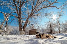 Подведены итоги конкурса«Зимний пейзаж (2016)» – ФотоКто