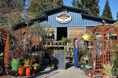 Mountain Feed and Farm Supply in Ben Lomond