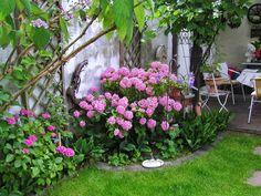 Beautiful  Gartenzaun natur Sie suchen f r Ihren Garten den richtigen Zaun und Gartenholz aller Art Dann sind Sie hier genau richtig Weitere Infos unter h u