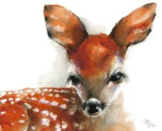 Deer Fawn  Giclee Print of watercolor painting. by MiraGuerquin
