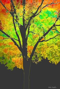 TREE OF COLOR 1 > DIGITAL ART