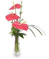 BEYOND A BUD VASE Arrangement in Edison, NJ | E FLOWERS AND GIFTS