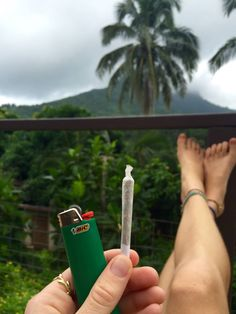 Grow Weed. Smoke Weed. — empire420:   This afternoon's smoke spot in my...
