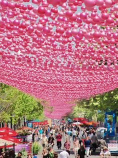 suspended pink installations - Google Search
