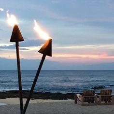 Wind Turbine, Paradise, Beach, The Beach, Beaches, Heaven