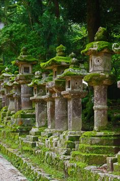 Photograph Kasuga Taisha Shrine, Nara, Japan by wistou on 500px Lanterns in Kasuga Taisha Shrine, Nara, Japan
