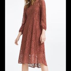 Zara Women Lace Dress!!!