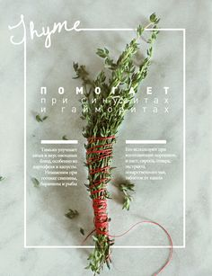 food poster// photography with words and typography