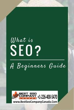 Toronto Local SEO Guide for Small Business Seo Guide, Seo Tips, What Is Seo, Local Seo, Toronto, Digital Marketing, Blogging, Business, Store