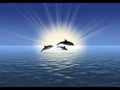 Relaja tu Mente: Visualización Meditación Guiada - YouTube
