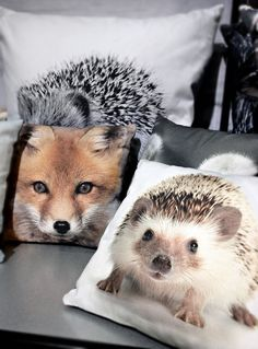 I love the hedgehog pillow. By Nord.