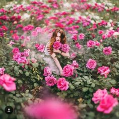 🌹🌹🌹  Photo by @hobopeeba   Location-Moscow, Russia  #travel#russia#moscow#gorkipark#garden#park#flowers#flower#roses#rose#relax#holiday#vacation#lifeisgood#enjoyyourlife#enjoy#life#hobopeeba#colours#colour#green#pink
