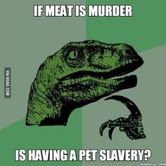 Angry vegans?