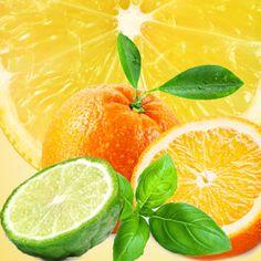 NG Cool Citrus & Basil Type Fragrance Oil | Natures Garden Fragrance Oils #coolcitrus&basil #fragranceoils