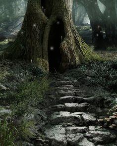 La forêt enchantée est un endroit magique où vivent en harmonie toutes sortes de petites créatures. Cette forêt a une âme, elle bouge, elle vit, elle parle.