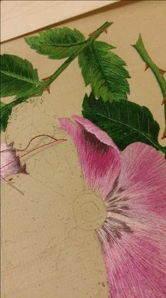 The Wild Rose Project: stashes, shading and… superglue?