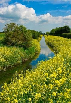 Gorgeous places -- check out the rest too! 36 Incredible Places That Nature Has Created For Your Eyes Only - Louth Canal, Lincolnshire, England Beautiful World, Beautiful Places, Lincolnshire England, All Nature, English Countryside, Beautiful Landscapes, Wonders Of The World, Scenery, Pictures