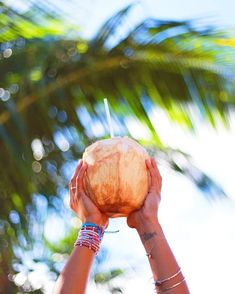 Repost from Coconut water 🥥YES PLEASE! providing you with an experience from the best of both worlds! Summer Breeze, Summer Vibes, Belize Travel, Paradise Island, My Cup Of Tea, Island Beach, Tropical Paradise, Refreshing Drinks, You Are Awesome