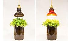 Botellas de cristal recicladas de formas sorprendentes