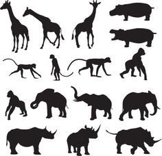African Animal Silhouette Collection