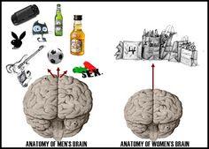 """Neurobiología.  """"Educación y la cuadratura del círculo""""  Blog del Dr. Roberto Rosler.  Además de muy interesantes artículos de neurociencias tiene publicaciones sobre cómo hacer presentaciones de Power Point (para cualquier área). Muy interesante!"""