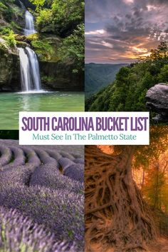 Check out this list of family friendly things do see and do in South Carolina. Must add them to your bucket list!