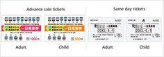 Free Pass Tokyo Metro Line