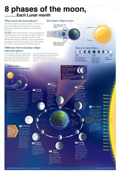 8 Phases Of The Moon [INFOGRAPHIC] #moon #phases