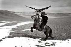 Gilles Carson - Entrainement d'un cheval Kazak pour la chasse à l'aigle, Deloun, Bayin Olgii, 2008