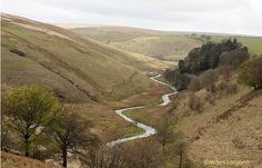 The Barle Valley near Simonsbath. Photo by Jochen Langbein. #Exmoor #travel #landscapes Visit www.exmoor4all.com for more great photos!
